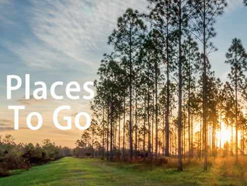 Places to go - placestogo.jpg