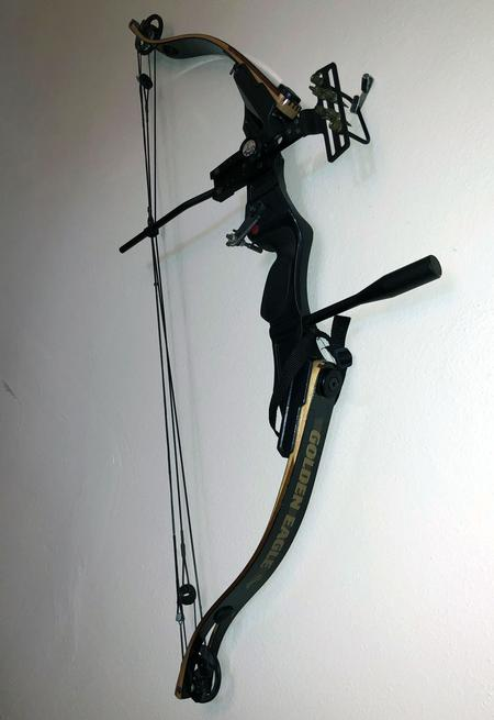 Classifieds: Golden Eagle Adult Bow golden-eagle-bow2-front-w.jpg